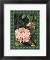 Rhododendrum I Fine Art Print