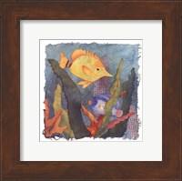 Tropical Fish III Fine Art Print