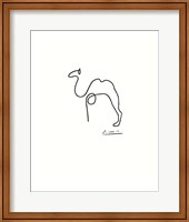 The Camel Fine Art Print