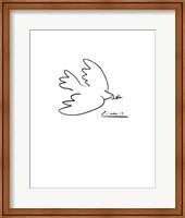Dove of Peace Fine Art Print