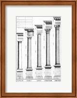 The Five Orders of Architecture Fine Art Print