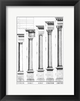 The Five Orders of Architecture Fine Art Print