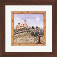 Olive Grove IV Fine Art Print