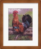Red And Turquoise Rooster Fine Art Print