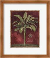 Caribbean Palm II With Bamboo Border Fine Art Print
