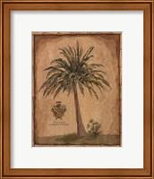 Caribbean Palm III With Bamboo Border Fine Art Print