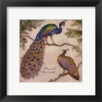 Peafowls Fine Art Print
