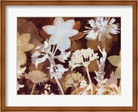 Translucent Shadows I B Fine Art Print