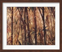 Bamboo Forest II Fine Art Print