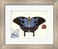Butterfly Prose III Fine Art Print