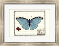 Butterfly Prose IV Fine Art Print
