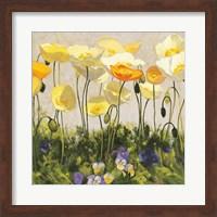 Poppies and Pansies II Fine Art Print