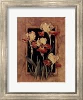 Framed Iris Fine Art Print