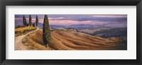 Four Cypress Fine Art Print