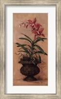 Orchid Revival l Fine Art Print