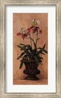 Orchid Revival ll Fine Art Print