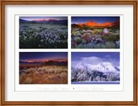 Four Seasons Fine Art Print