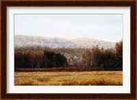 November Hedgerow Fine Art Print