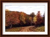 Autumn Lane Fine Art Print