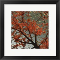 Sunset Forest II Fine Art Print