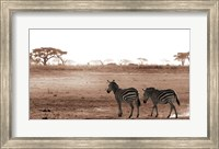 Crossing The African Plains Fine Art Print