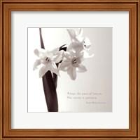 Daffodil Secrets Fine Art Print