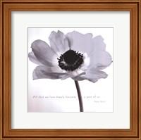 Poppy Love Fine Art Print