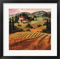 Dawn of a Tuscan Vineyard Fine Art Print