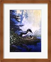 Loons at Lakeside Fine Art Print