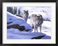 Wolves on the Prowl Fine Art Print