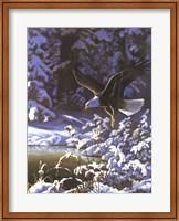 Eagle In Winter Fine Art Print