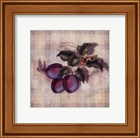 Tartan Fruit-Plum Fine Art Print