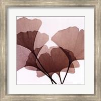 Ginko Leaves I Fine Art Print