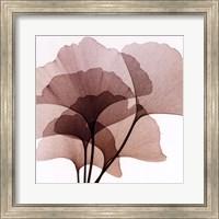 Ginko Leaves II Fine Art Print