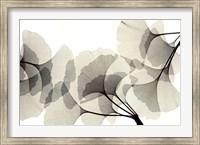 Ginko Dance Fine Art Print