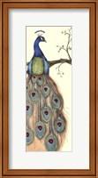 Small Rebecca's Peacock I (P) Fine Art Print