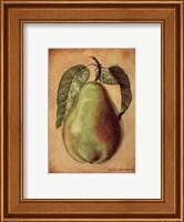 Williams Pear Fine Art Print