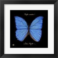 Striking Butterfly I Fine Art Print