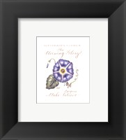 September's Flower, Morning Glory Fine Art Print