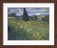 Green Wheat Fields Fine Art Print