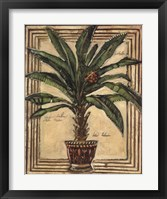 Potted Palm II Fine Art Print