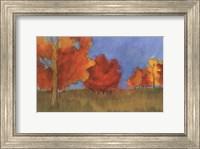 Summer's Fall I Fine Art Print