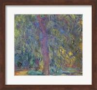 Weeping Willow, 1918-19 Fine Art Print