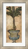 Potted Palm IV Fine Art Print