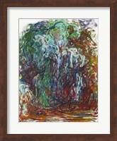 Weeping Willow Fine Art Print