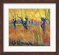 Pollarded Willows and Setting Sun, 1888 Fine Art Print