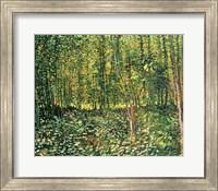 Trees and Undergrowth, 1887 Fine Art Print