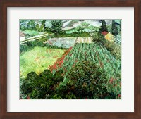 Field with Poppies, 1889 Fine Art Print