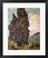 Cypresses, 1889 Fine Art Print