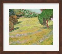 Field in Sunlight, 1888 Fine Art Print